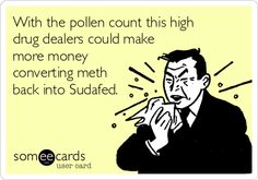 With the pollen count this high drug dealers could makemore money converting meth back into Sudafed.