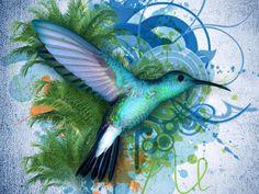 I love hummingbirds.