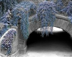 """""""Winter in Central Park"""" by Richard James, shown on Artist Rising."""