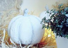 Ich stehe ja total auf simple Herbstdeko mit weißen Kürbissen. Also warum nicht ein weißen Pappmaché Kürbis für die Ewigkeit basteln? So geht´s!