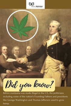 grew Before was made illegal in the U., the politicians including some of the nation's Founding Fathers and presidents like George Washington and used to grow Get your now! Medical Marijuana, Cannabis, Ganja Love, North York, Girl Scout Cookies, Blue Dream, Buy Weed Online, Thomas Jefferson, Founding Fathers