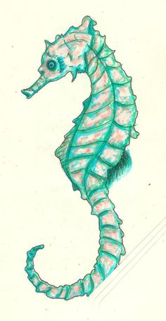 Nuther Seahorse by ~Pandamore on deviantART | Seahorse Art