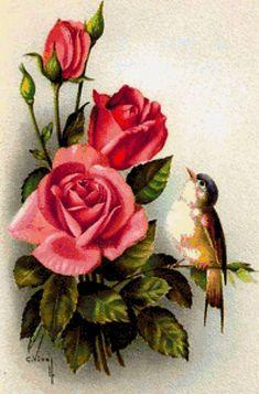 Цветы и птички - Схемы вышивки - poltanya1 - Авторы - Портал «Вышивка крестом» Bird Pictures, Pictures To Paint, Vintage Pictures, Vintage Birds, Vintage Flowers, Vintage Rosen, Blossom Trees, Decoupage Paper, Flower Images