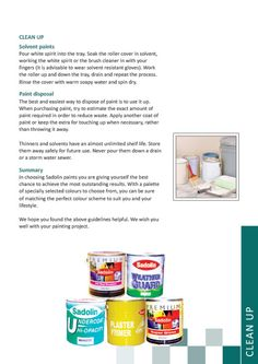 Painting Tips by Sadolin