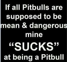 If all pitbulls are supposed to be mean and dangerous, mine sucks at being a pitbull.