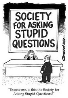Stupid Questions #cartoons #funny