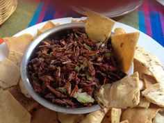 Chapulines!  The best treat Oaxaca has to offer!