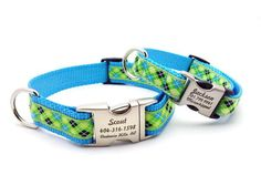 Lime Green & Blue Argyle Dog Collar with Personalized Buckle – Bark Label