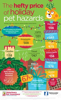 Infographic: Holiday Pet Hazards