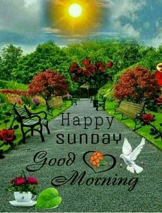 Happy Sunday Messages, Happy Sunday Hd Images, Good Morning Sunday Images, Good Morning Sister, Good Morning Nature, Happy Sunday Friends, Good Morning Image Quotes, Happy Sunday Quotes, Good Morning Greetings