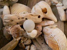 Beachy Garland Shells White Cream Neutral Natural by sassandwiggle