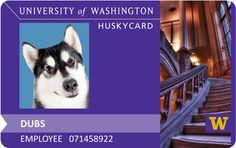 Dubs has his very own Husky Card!