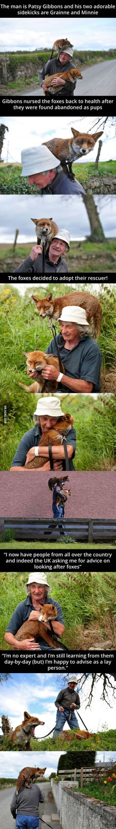 Man Rescued 3 foxes and now they won't leave his side