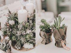 ADORO: Flores decoração - sucolentas // Decoration flowers - sucolents