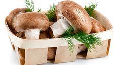 Ciupercile luptă împotriva cancerului și reînnoiesc celulele - Diete-Sanatoase.ro