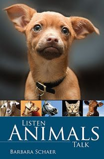 "Soulwriter and Healer: Reviews on ""Listen Animals Talk"""