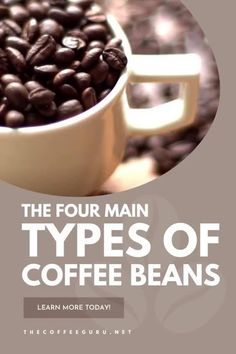 Did you know that there are four different types of coffee beans out there? Want to learn more about what type of coffee bean you might be drinking? Tune into our guide today! #coffeebeans #typesofcoffeebeans #arabicacoffeebeans #robustacoffeebeans #coffeeroasting Types Of Coffee Beans, Different Types Of Coffee, Coffee Brewing Methods, Coffea Arabica, Arabica Coffee Beans, Coffee Today, Coffee Facts, Best Coffee Maker, Coffee Plant