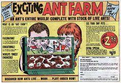 ANT FARM COMIC BOOK VINTAGE AD by Christian Montone, via Flickr