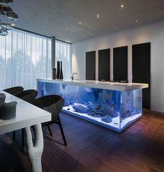 Les 8 Meilleures Images Du Tableau Aquarium Sur Pinterest Aquarium