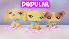 Lps Popular The Barbie Dolls by sadaslhey on DeviantArt Little Pet Shop, Little Pets, Lps Popular, Lps Toys, Lps Littlest Pet Shop, Our Kids, Barbie Dolls, To My Daughter, My Love
