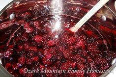 Ozark Mountain Family Homestead: Canning Blackberries