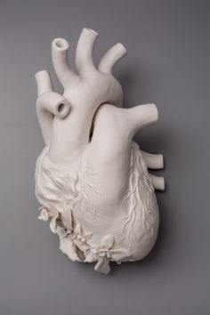 Kate MacDowell's hand-built porcelain sculptures. Visit Kate at: www.katemacdowell.com.