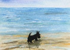Scottie Dog Art Print Scottish Terrier 'Beach by ArchyScottie