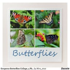 Shop Gorgeous Butterflies Collage, 4 Photos, Age 10 Jigsaw Puzzle created by Personalize it with photos & text or purchase as is! Jigsaw Puzzles, Buckeye Butterfly, Peacock Butterfly, Make Your Own Puzzle, 10 Year Old Boy, Gifts For An Artist, Childrens Gifts, Best Birthday Gifts, Puzzle