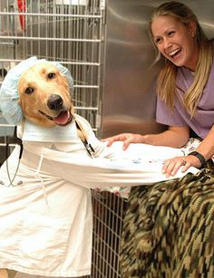 Feliz Dia Veterinarian playing who's the vet & who's the pet.