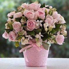 Bom dia! Que nunca nos falte delicadeza e amabilidade! Boa semana!  #flowers #flower #TagsForLikes #petal #petals #nature #beautiful #love #pretty #plants #blossom #sopretty #spring #summer #flowerstagram #flowersofinstagram #flowerstyles_gf #flowerslovers #flowerporn #botanical #floral #florals #insta_pick_blossom #flowermagic #instablooms #bloom #blooms #botanical #floweroftheday