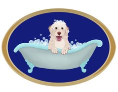 ☀opawz.com   supply pet hair dye,pet hair chalk,pet perfume,pet shampoo,spa....