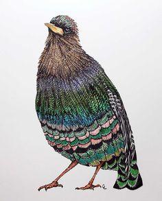 cci x missoni : Birds Of A Feather — CAITLYN CARLISLE cci x ...