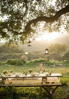 dining table, sheer table cloth, hanging lanterns, beautiful old tree and magical light