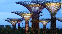 Singapore Supertrees