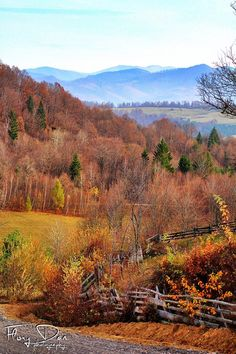 Best Time to Visit Transylvania - The Adventures of Kiara Yew Beautiful Scenery, Beautiful Landscapes, Cool Places To Visit, Places To Go, Transylvania Romania, Fall Vacations, Romania Travel, Country Landscaping, Best Cities