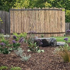 Landscape & Garden Design in Melbourne Australia - Qualified Horticulturist Ph 0413 430 622 Landscape Design Melbourne, Slate Rock, Fence Screening, Fences, Screens, Latte, Garden Design, Rocks, Wood