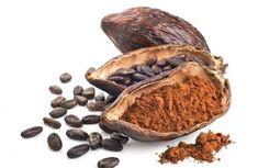 Тайны кухни Какао