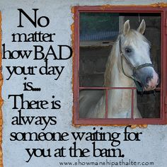 Never a bad day at the barn...and look who's waiting to hear you get home...lovely.  www.showmanshipathalter.com