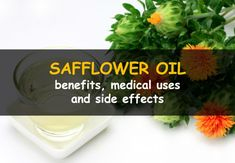13 amazing benefits of safflower oil, practical use of this supplement and possible side effects. Holistic Remedies, Herbal Remedies, Health Heal, Health And Wellness, Turmeric Supplement Benefits, Cla Benefits, Cla Safflower Oil, Nutrition Articles, Hcg Diet