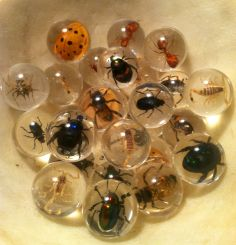 These measure about of an inch and contain real spiny spiders, bees, ants, beetles and this big yellow lady bug thing. Marble Board, Marble Games, Bouncy Ball, Gothic House, Glass Marbles, Glass Globe, Home Decor Inspiration, Dice, Altered Art