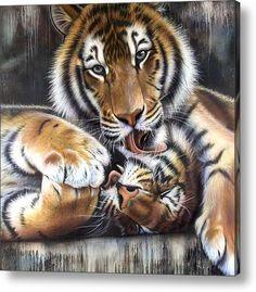 Two Tigers Acrylic Print By Sandi Baker