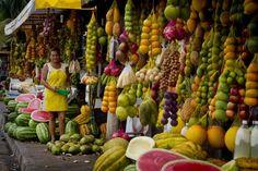 Os sabores da Amazônia - Paladar