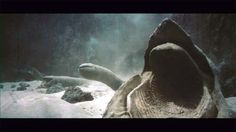 The giant worms of Arrakis