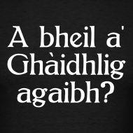 Have you got some Gaidhlig on you?   I suspect that  the expression ¨have you got something ON YOU or WITH YOU  in English comes from Gaidhlig originally.......  Tha mi airson Gàidhlig ionnsachadh.