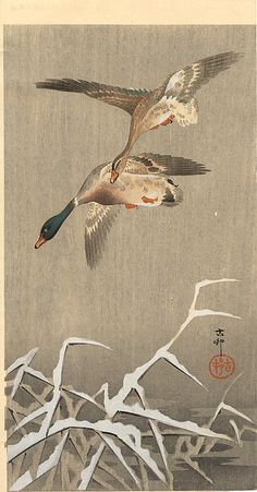 Richard room art  Grasshoper and Fool Moon - Ohara Koson - WikiPaintings.org