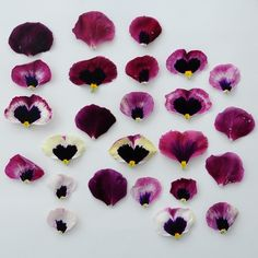 a deconstructed pansy via Flower Girl NYC