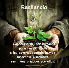 Definición de la resilencia.