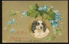 Cute Christmas Dog with Flowers~ Antique Embossed Postcard-ddd825