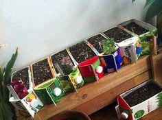 Milk Carton Planter - great idea