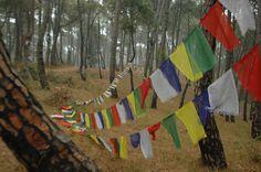 Hattiban, #Nepal - April 2, 2016